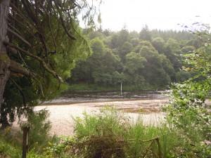 Scotland 2013 018